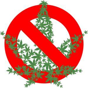 Essays on marijuana legalization